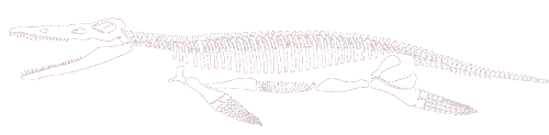 mcz kronosaurus logo with link to website
