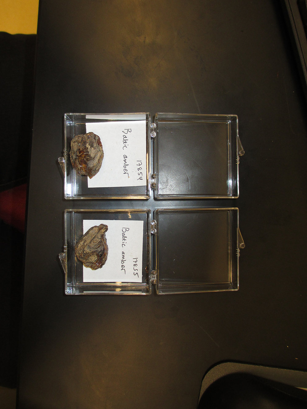 http://mczbase.mcz.harvard.edu/specimen_images/entomology/paleo/large/PALE-17854_Undetermined_undetermined_raw_amber.jpg