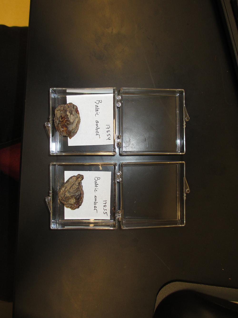 http://mczbase.mcz.harvard.edu/specimen_images/entomology/paleo/large/PALE-17855_Undetermined_undetermined_raw_amber.jpg