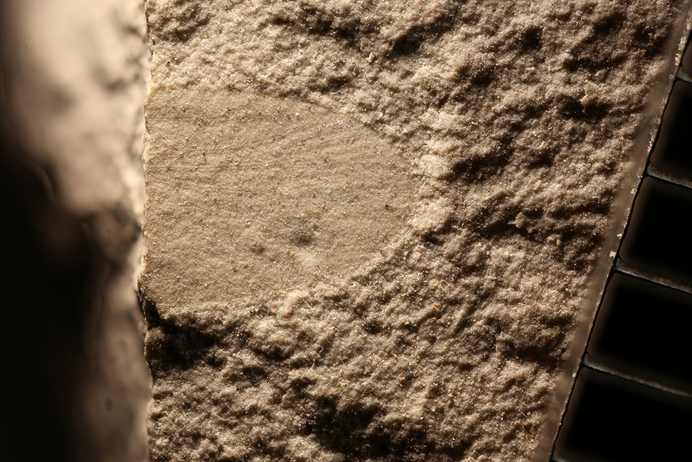 http://mczbase.mcz.harvard.edu/specimen_images/entomology/paleo/large/PALE-30756_Mecoptera_qm.jpg