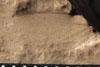 http://mczbase.mcz.harvard.edu/specimen_images/entomology/paleo/large/PALE-10127_Lemmatophera_typa_etho.jpg