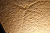 http://mczbase.mcz.harvard.edu/specimen_images/entomology/paleo/large/PALE-11499_Tarsophlebia_eximia_(cp_11500).jpg