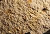 http://mczbase.mcz.harvard.edu/specimen_images/entomology/paleo/large/PALE-11508_Agrion_sp.jpg