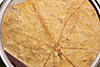 http://mczbase.mcz.harvard.edu/specimen_images/entomology/paleo/large/PALE-1155a_Tipula_magnifica_type_2.jpg