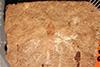 http://mczbase.mcz.harvard.edu/specimen_images/entomology/paleo/large/PALE-1166_Tipula_rigens_type.jpg