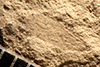 http://mczbase.mcz.harvard.edu/specimen_images/entomology/paleo/large/PALE-12507_Dichentomum_tinctum_(cp_12519).jpg
