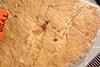 http://mczbase.mcz.harvard.edu/specimen_images/entomology/paleo/large/PALE-1302_Tipula_limi_type.jpg