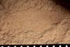 http://mczbase.mcz.harvard.edu/specimen_images/entomology/paleo/large/PALE-13038_Artinska_clara_etho.jpg