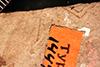 http://mczbase.mcz.harvard.edu/specimen_images/entomology/paleo/large/PALE-1447_Tipula_florissanta_type.jpg