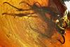 http://mczbase.mcz.harvard.edu/specimen_images/entomology/paleo/large/PALE-18170_Dolichopodidae_qm.jpg