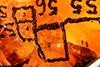 http://mczbase.mcz.harvard.edu/specimen_images/entomology/paleo/large/PALE-26824_Nematocera_qm.jpg