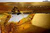 http://mczbase.mcz.harvard.edu/specimen_images/entomology/paleo/large/PALE-26859_Isoptera_2.jpg