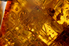 http://mczbase.mcz.harvard.edu/specimen_images/entomology/paleo/large/PALE-26860_syn1_Isoptera.jpg