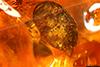 http://mczbase.mcz.harvard.edu/specimen_images/entomology/paleo/large/PALE-27692_syn2_Coleoptera.jpg