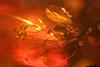 http://mczbase.mcz.harvard.edu/specimen_images/entomology/paleo/large/PALE-27756_syn11_Diptera.jpg