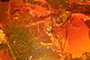 http://mczbase.mcz.harvard.edu/specimen_images/entomology/paleo/large/PALE-33600_Brachycera.jpg