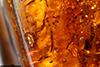 http://mczbase.mcz.harvard.edu/specimen_images/entomology/paleo/large/PALE-34033_Auchenorrhyncha_2.jpg