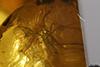 http://mczbase.mcz.harvard.edu/specimen_images/entomology/paleo/large/PALE-35455_syn3_Sciaridae.jpg