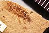 http://mczbase.mcz.harvard.edu/specimen_images/entomology/paleo/large/PALE-368_Derobrochus_marcidus_type.jpg