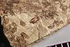 http://mczbase.mcz.harvard.edu/specimen_images/entomology/paleo/large/PALE-37010_Arthropoda.jpg