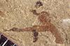 http://mczbase.mcz.harvard.edu/specimen_images/entomology/paleo/large/PALE-37708_Arthropoda.jpg