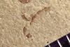 http://mczbase.mcz.harvard.edu/specimen_images/entomology/paleo/large/PALE-38007_Arthropoda.jpg
