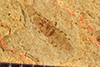 http://mczbase.mcz.harvard.edu/specimen_images/entomology/paleo/large/PALE-38777_Arthropoda.jpg