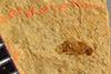 http://mczbase.mcz.harvard.edu/specimen_images/entomology/paleo/large/PALE-38793_Arthropoda.jpg