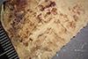 http://mczbase.mcz.harvard.edu/specimen_images/entomology/paleo/large/PALE-41328_Arthropoda.jpg