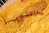 http://mczbase.mcz.harvard.edu/specimen_images/entomology/paleo/large/PALE-4137_Inocellia_eventa_type.jpg