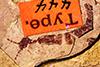 http://mczbase.mcz.harvard.edu/specimen_images/entomology/paleo/large/PALE-444_Labiduromma_exsulatum_type_2.jpg
