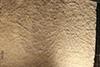 http://mczbase.mcz.harvard.edu/specimen_images/entomology/paleo/large/PALE-6030_Achelata_det_larva_(cp_6029).jpg