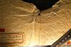 http://mczbase.mcz.harvard.edu/specimen_images/entomology/paleo/large/PALE-6177_Anax_buchii_type.jpg