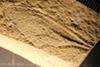 http://mczbase.mcz.harvard.edu/specimen_images/entomology/paleo/large/PALE-6258_Cymatophlebia_sp.jpg