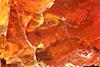 http://mczbase.mcz.harvard.edu/specimen_images/entomology/paleo/large/PALE-6791_syn2_Orthoptera.jpg