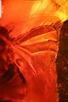 http://mczbase.mcz.harvard.edu/specimen_images/entomology/paleo/large/PALE-7962_Dolichopodidae_2.jpg