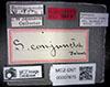 http://mczbase.mcz.harvard.edu/specimen_images/entomology/large/MCZ-ENT00007875_Sapromyza_conjuncta_lbs.jpg