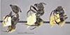 http://mczbase.mcz.harvard.edu/specimen_images/entomology/large/MCZ-ENT00009118_Camponotus_pellarius_halb.jpg