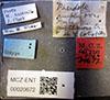 http://mczbase.mcz.harvard.edu/specimen_images/entomology/large/MCZ-ENT00020672_Pheidole_ampla_perthensis_lbs.jpg