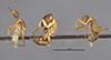 http://mczbase.mcz.harvard.edu/specimen_images/entomology/large/MCZ-ENT00021493_Camponotus_incensus_hala.jpg
