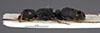 http://mczbase.mcz.harvard.edu/specimen_images/entomology/large/MCZ-ENT00029402_Camponotus_scabrinodis_hal.jpg
