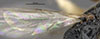 http://mczbase.mcz.harvard.edu/specimen_images/entomology/large/MCZ-ENT00031600_Epyris_connexus_hwg.jpg