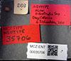 http://mczbase.mcz.harvard.edu/specimen_images/entomology/large/MCZ-ENT00035706_Hister_subrotundus_lbs.jpg