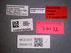 Media of type image, MCZ:Ent:36172 Identified as Pheidole natalie type status Holotype of Pheidole natalie. . Aspect: labels