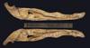http://mczbase.mcz.harvard.edu/specimen_images/herpetology/large/R153039_C_novaeguineae_mandible_i.jpg