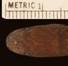 http://mczbase.mcz.harvard.edu/specimen_images/herpetology/large/R173870_Atractus__hd.jpg