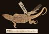 http://mczbase.mcz.harvard.edu/specimen_images/herpetology/large/R20694_E_argus_argus_P_d.jpg