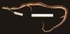 http://mczbase.mcz.harvard.edu/specimen_images/herpetology/large/R42788_R_sargenti_H_l.jpg
