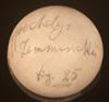 http://mczbase.mcz.harvard.edu/specimen_images/herpetology/large/R4949_M_temminckii_egg1.jpg