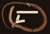 http://mczbase.mcz.harvard.edu/specimen_images/herpetology/large/R81020_A_polylepis_H_v.jpg